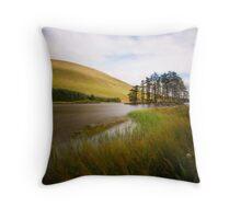 Beacons Reservoir Throw Pillow