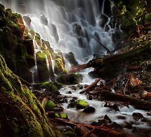 In the Land of Dreams and Fairytales by Tula Top