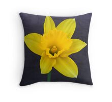 Bright Yellow Daffodil Throw Pillow