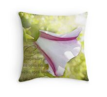 Christian hospitality-inspirational Throw Pillow