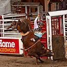 Bull Riding  by BCkat