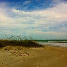 Cocoa Beach by Larissa  White Edwards