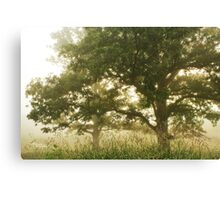Giants in the fog Canvas Print