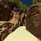 Sandy Ways  by Pro Nature Photography