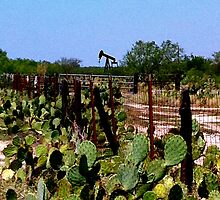 South Texas by Larissa  White Brown