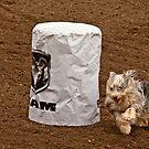 Barrel Racing Dog by BCkat