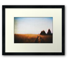 Paths VII Framed Print