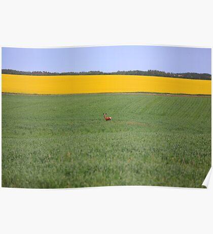 Saskatchewan Landscape Poster