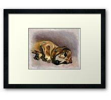 Laying in the sun rays Framed Print