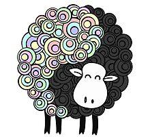 Yin Yang Sheep by Orce