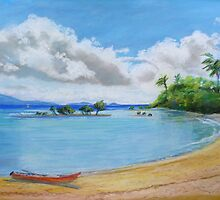 Port Douglas Queensland  by Virginia McGowan