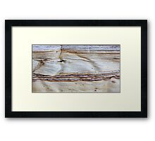 Wind Seeker Framed Print