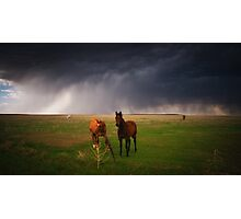 Horses In The Storm Photographic Print