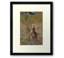 I Can Do it! Framed Print