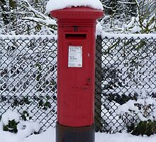 Mailbox in the Snow by Sandra Caven