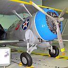 F3F-2 Biplane - Polk City, FL, U.S.A. by Glenn Cecero