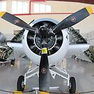 F4F - Wildcat folded up by Glenn Cecero