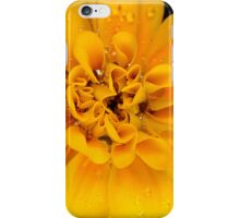 French Marigold 07 iphone, ipod case iPhone Case/Skin