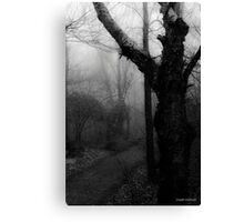 Eerie Stillness Canvas Print