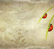 LadyBirds by Svetlana Sewell