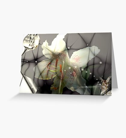 Lily Dreams Greeting Card