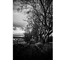 Spooky Path Photographic Print