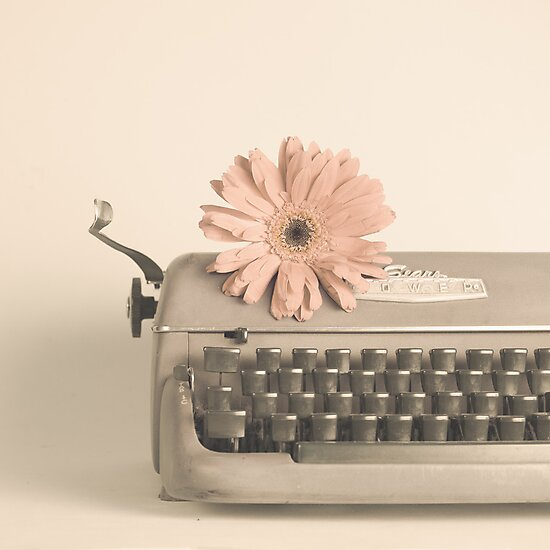 Soft Typewriter and Pink Flower  by Andreka