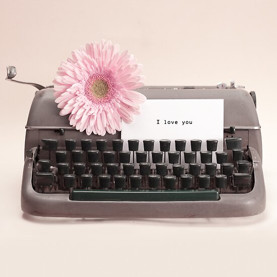 Pink Flower and Typewriter  by Andreka