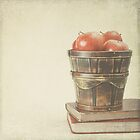 Old Books and Apples  by Andreka