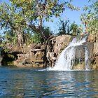 Indarri Falls, Lawn Hill (Boodjamulla) National Park, Queensland by Adrian Paul
