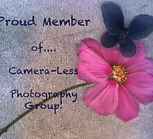 Banner Proud Member Camera-Less Photography by Eve Parry