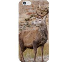 Proud Stag iPhone Case/Skin