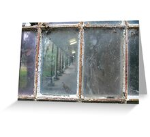 Through the glass  Greeting Card