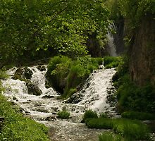Roughlock Falls by Scott Hendricks