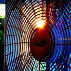 Fan of the Fan by Deb  Badt-Covell