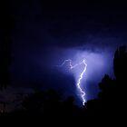 Lightning Strike by carmstrong