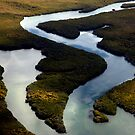 Baja Wilderness by phil decocco