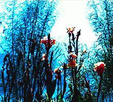 Verdes, azules, naranjas. by Neuro Díaz