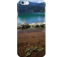 Double lake iPhone Case/Skin