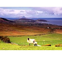 Clew Bay Co. Mayo Photographic Print