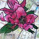 Pink Hellebore in Frankston by Alexandra Felgate