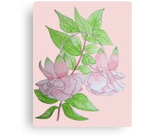 Pink fuchsia flowers with leaves water-color art  Canvas Print