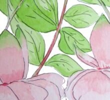 Pink fuchsia flowers with leaves water-color art  Sticker