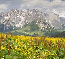 Alpine Panorama by Walter Quirtmair