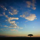 Under an African Sky by Jill Fisher
