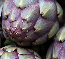 Artichokes by ZWC Photography