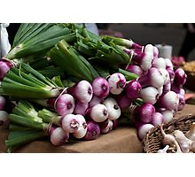 Bunches of Onions Photographic Print