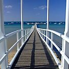 Sorrento Jetty by Janette Rodgers