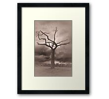 Twilight Tree Framed Print