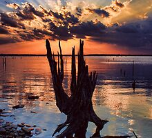 Sunset On Steroids by Carolyn  Fletcher